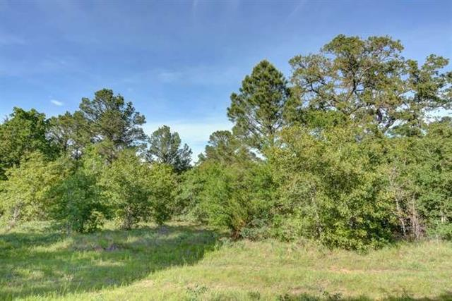 Photo of home for sale at TBD 13.9 acres Antioch RD, Paige TX